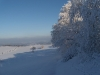 Barigauer Turm - Ausblick (Nordost)