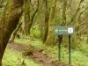 La Gomera - Wanderpfade