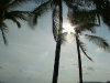 Platz unter Palmen